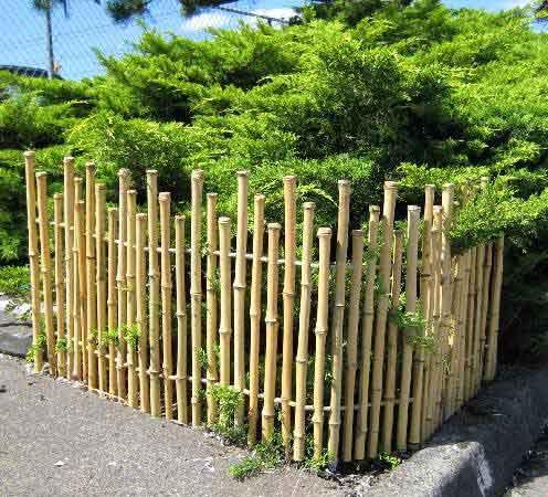 Old Wooden Picket Fence Designs Fences