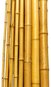 Bamboo theme for Bamboo roofing materials
