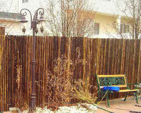 Perfect Black Bamboo Fence In Outdoor Black Bamboo Fence Hang On Ceiling