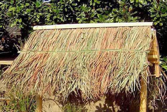 Elephant Grass Thatch