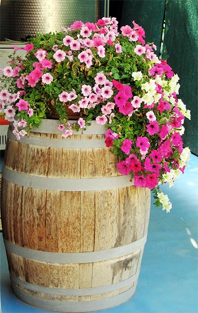Full Barrel Planter
