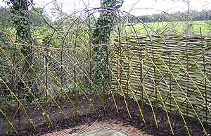 Pre fabricated non living willow edging Living willow fencingLiving Willow Fence. Living Willow Fence Panels. Home Design Ideas