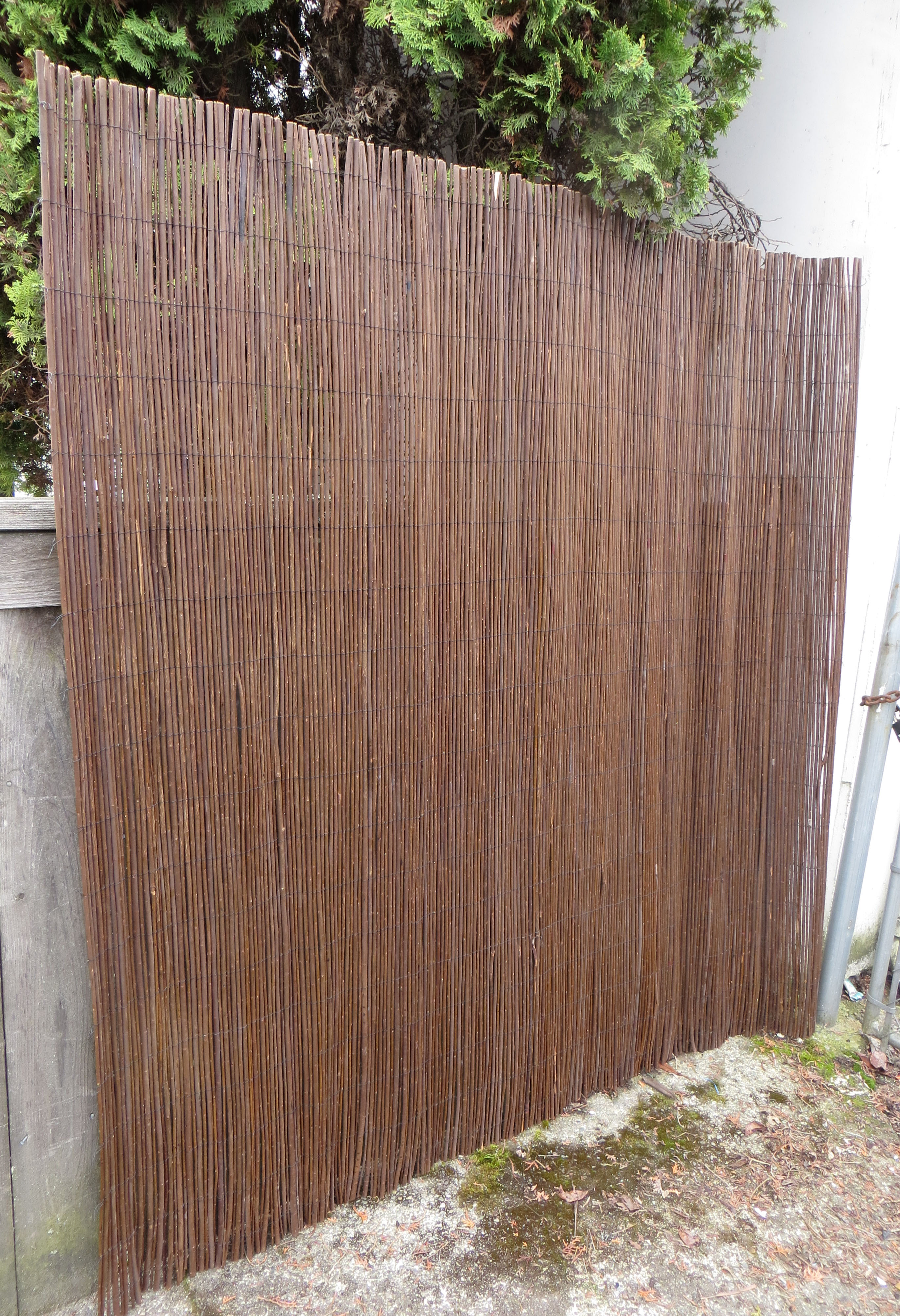 Download Installing Bamboo Roll Fence Free Companionbackuper